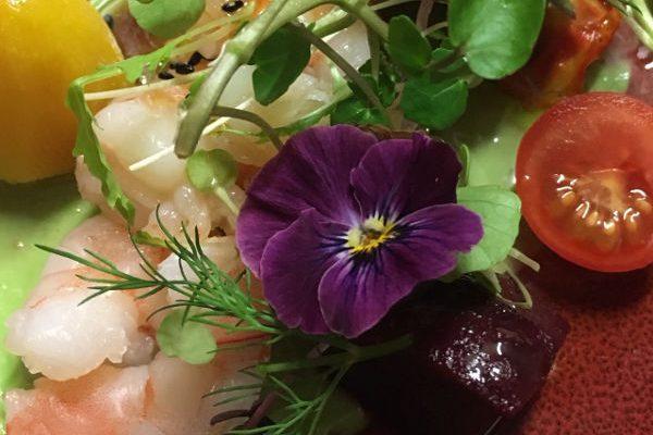 Prawn Salad600X400